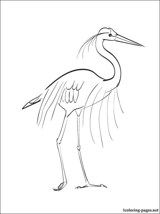 Great Blue Heron coloring #1, Download drawings