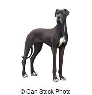 Great Dane clipart #8, Download drawings