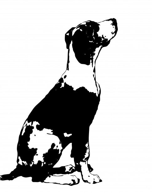 Great Dane clipart #13, Download drawings