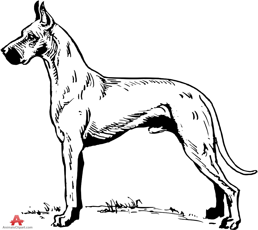 Great Dane clipart #20, Download drawings