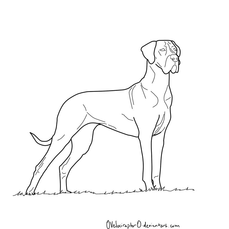 Great Dane coloring #17, Download drawings