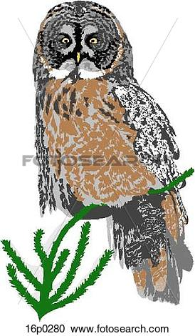 Great Gray Owl clipart #11, Download drawings