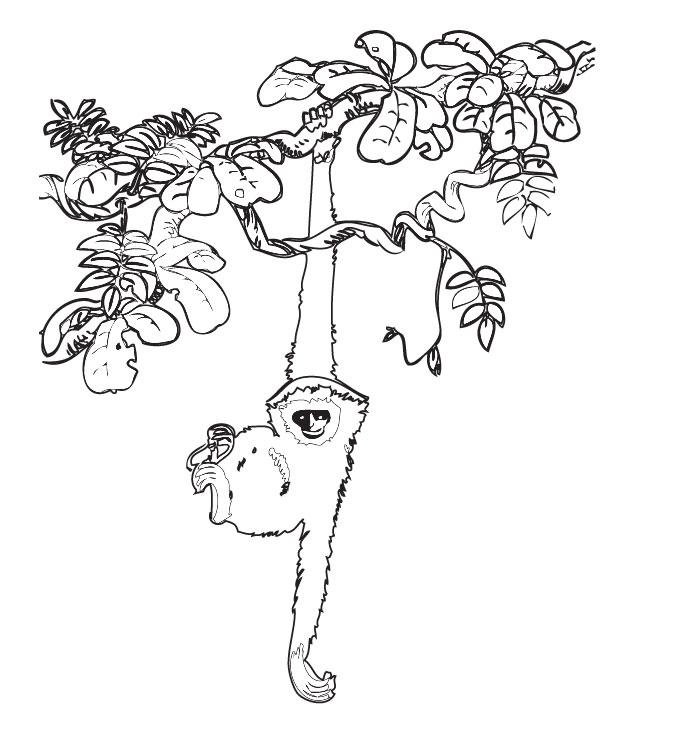 Great Gray Owl coloring #6, Download drawings