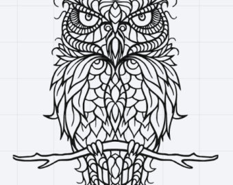 Great Gray Owl svg #6, Download drawings