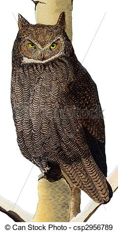 Horned Owl clipart #1, Download drawings