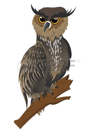 Great Horned Owl clipart #14, Download drawings