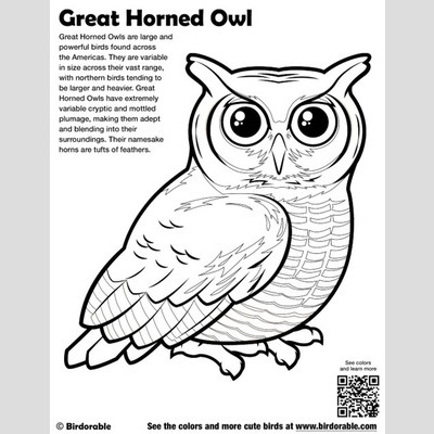 Great Horned Owl coloring #10, Download drawings