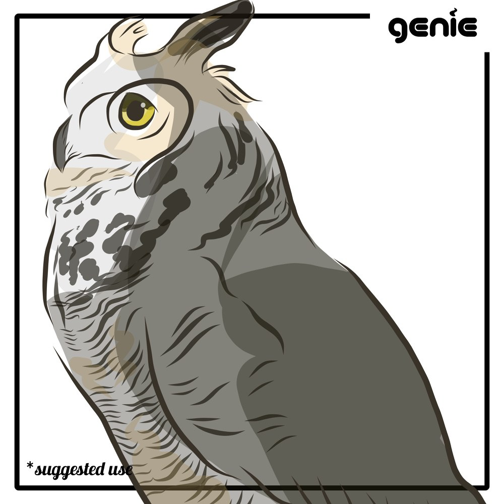 Great Horned Owl svg #6, Download drawings