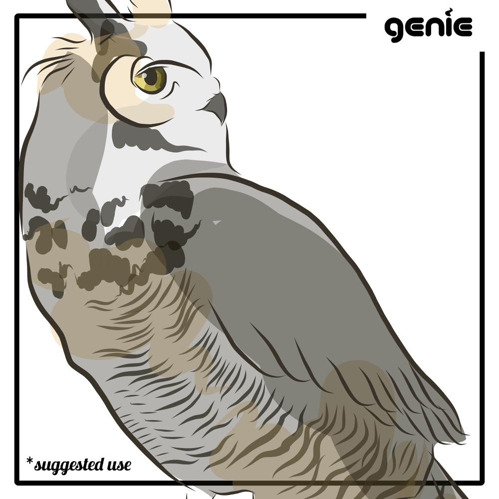 Great Horned Owl svg #16, Download drawings