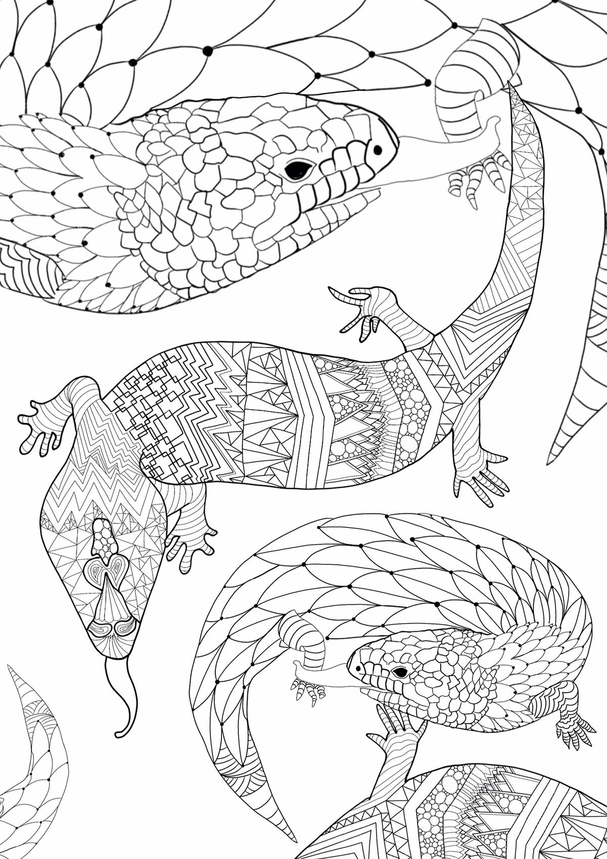 Great Ocean Road coloring #4, Download drawings