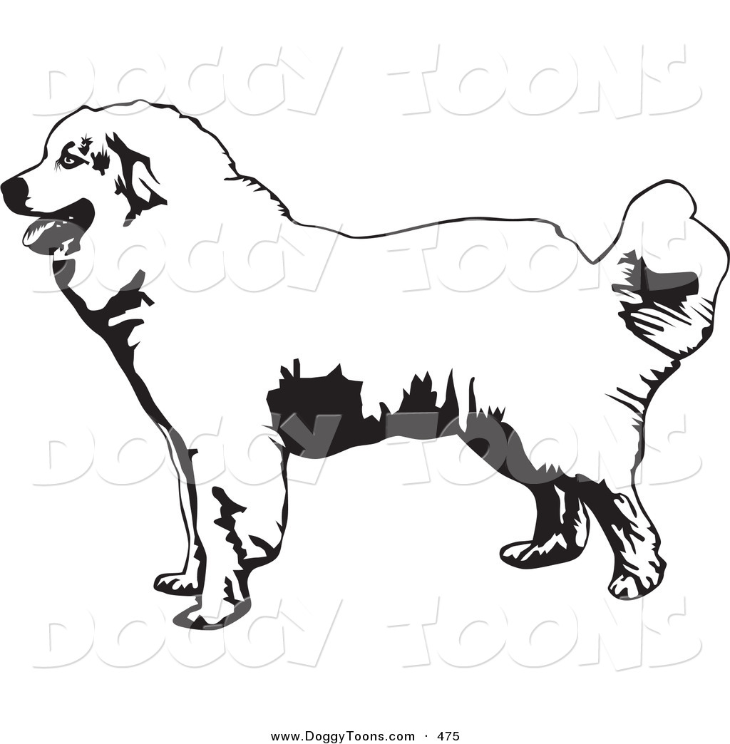 Great Pyrenees clipart #18, Download drawings