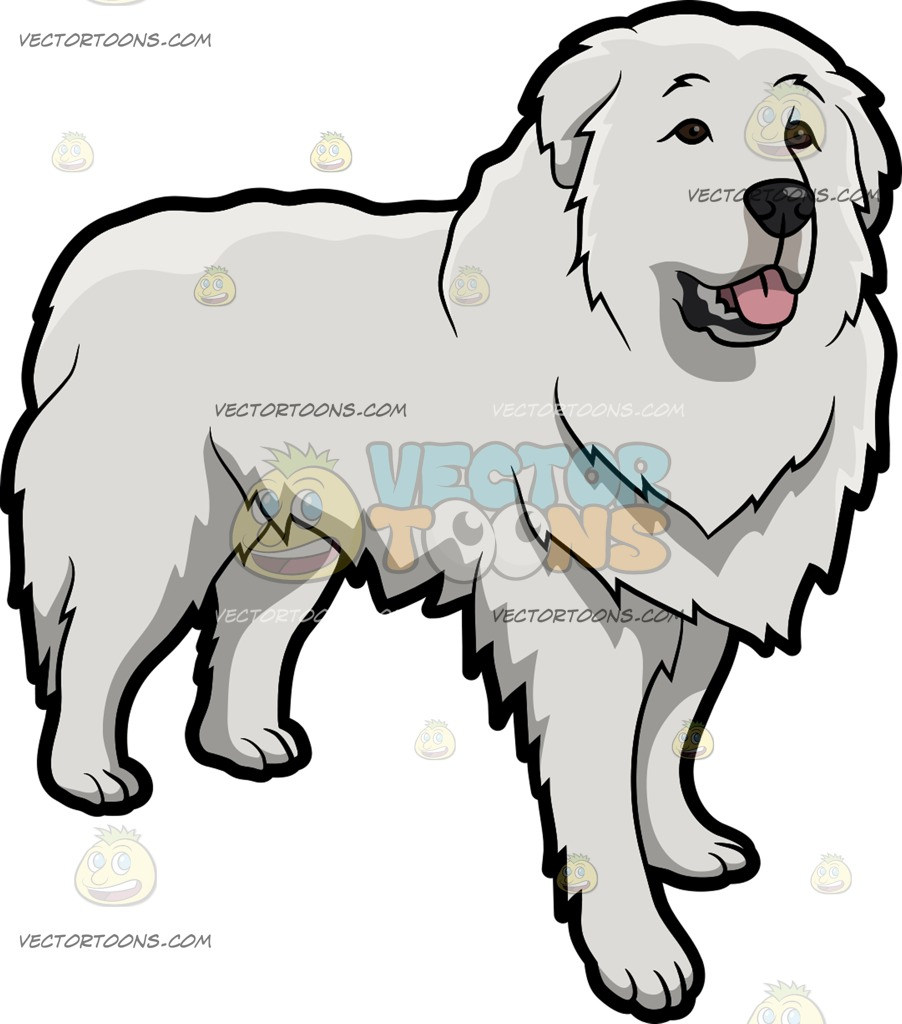 Great Pyrenees clipart #7, Download drawings