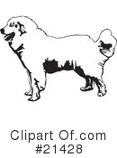 Great Pyrenees clipart #20, Download drawings