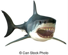 Great White Shark clipart #13, Download drawings