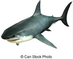 Great White Shark clipart #20, Download drawings