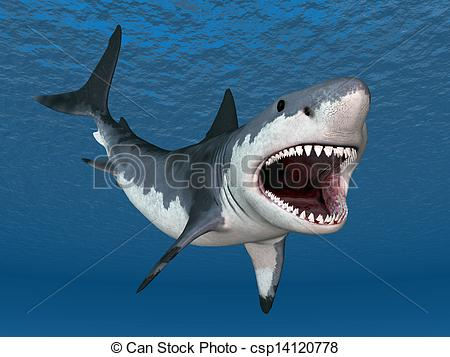 Great White Shark clipart #11, Download drawings