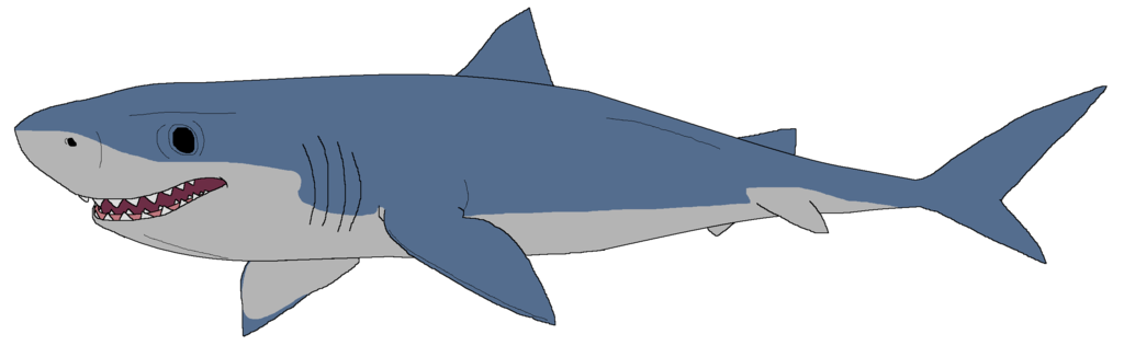 Great White Shark clipart #18, Download drawings