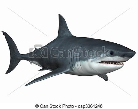 Great White Shark clipart #17, Download drawings