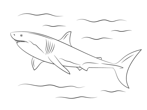 Great White Shark coloring #3, Download drawings