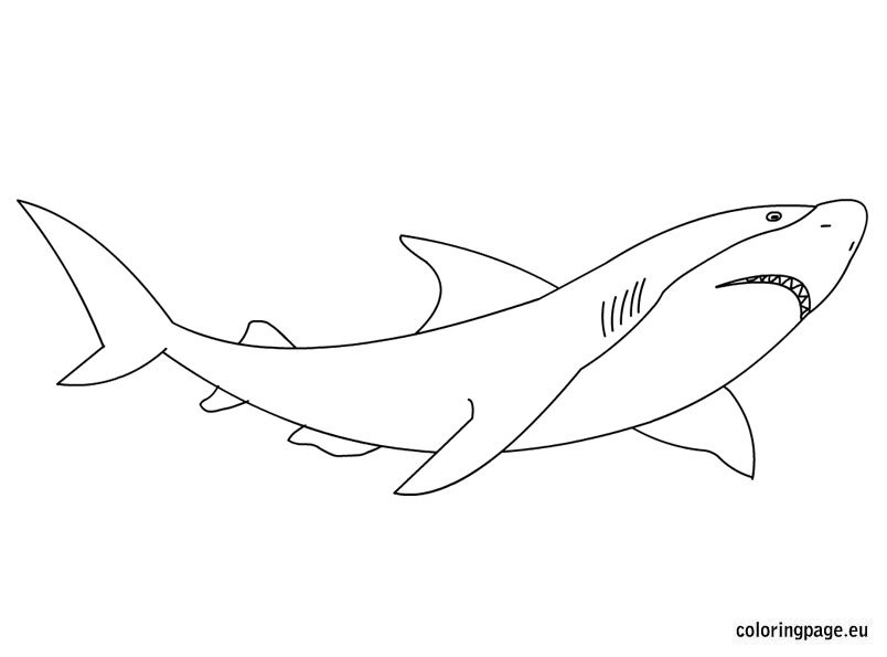 Great White Shark coloring #16, Download drawings