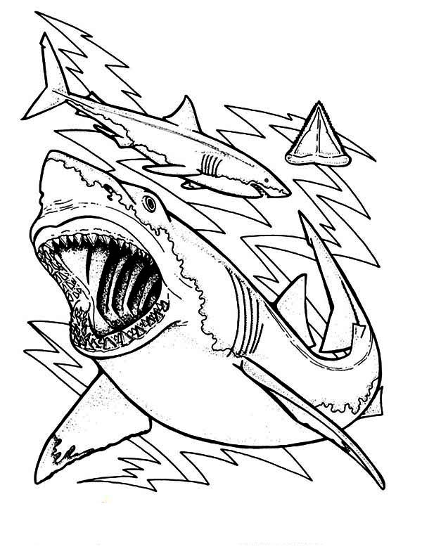 Great White Shark coloring #12, Download drawings