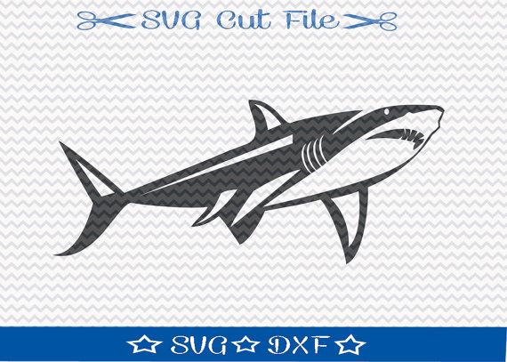 Great White Shark svg #12, Download drawings