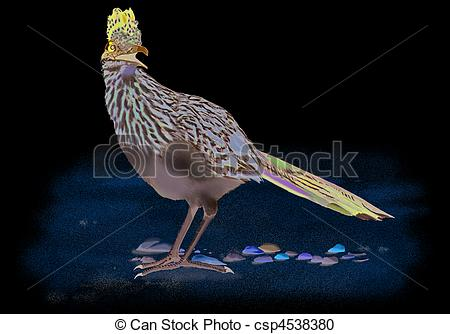 Greater Roadrunner clipart #18, Download drawings