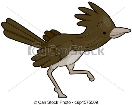 Greater Roadrunner clipart #16, Download drawings