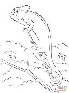 Green Anole coloring #14, Download drawings