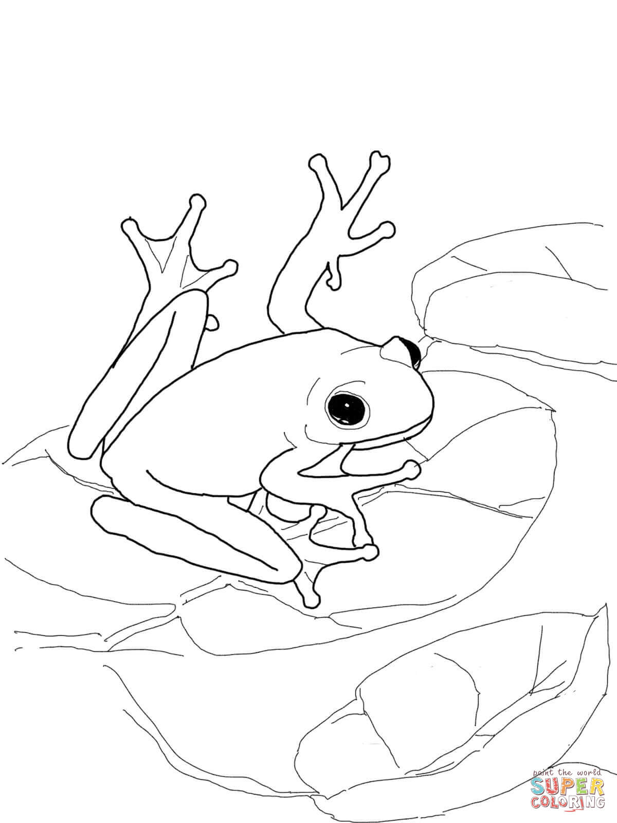 Green Frog coloring #1, Download drawings