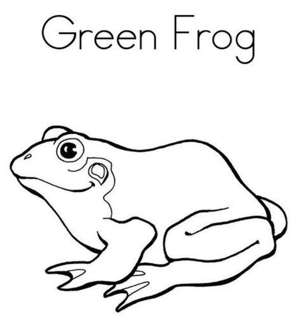 Green Frog coloring #8, Download drawings