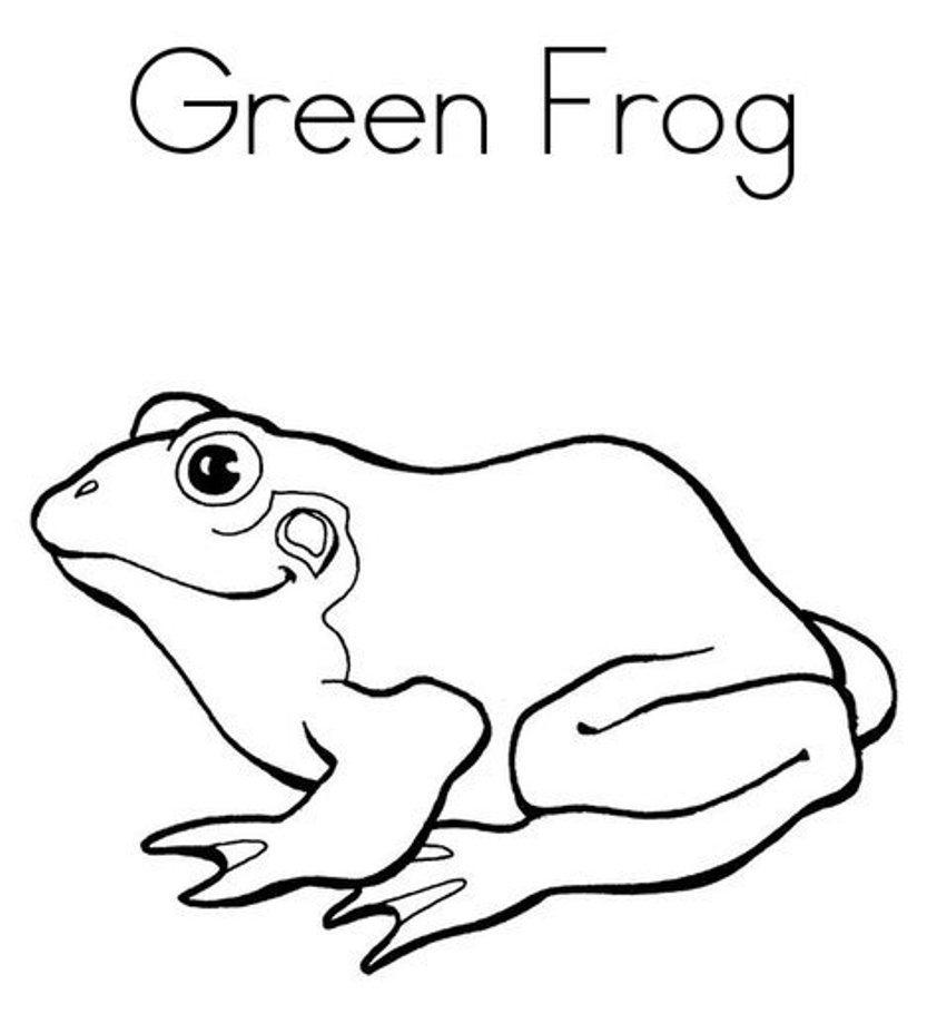 Green Frog coloring #20, Download drawings