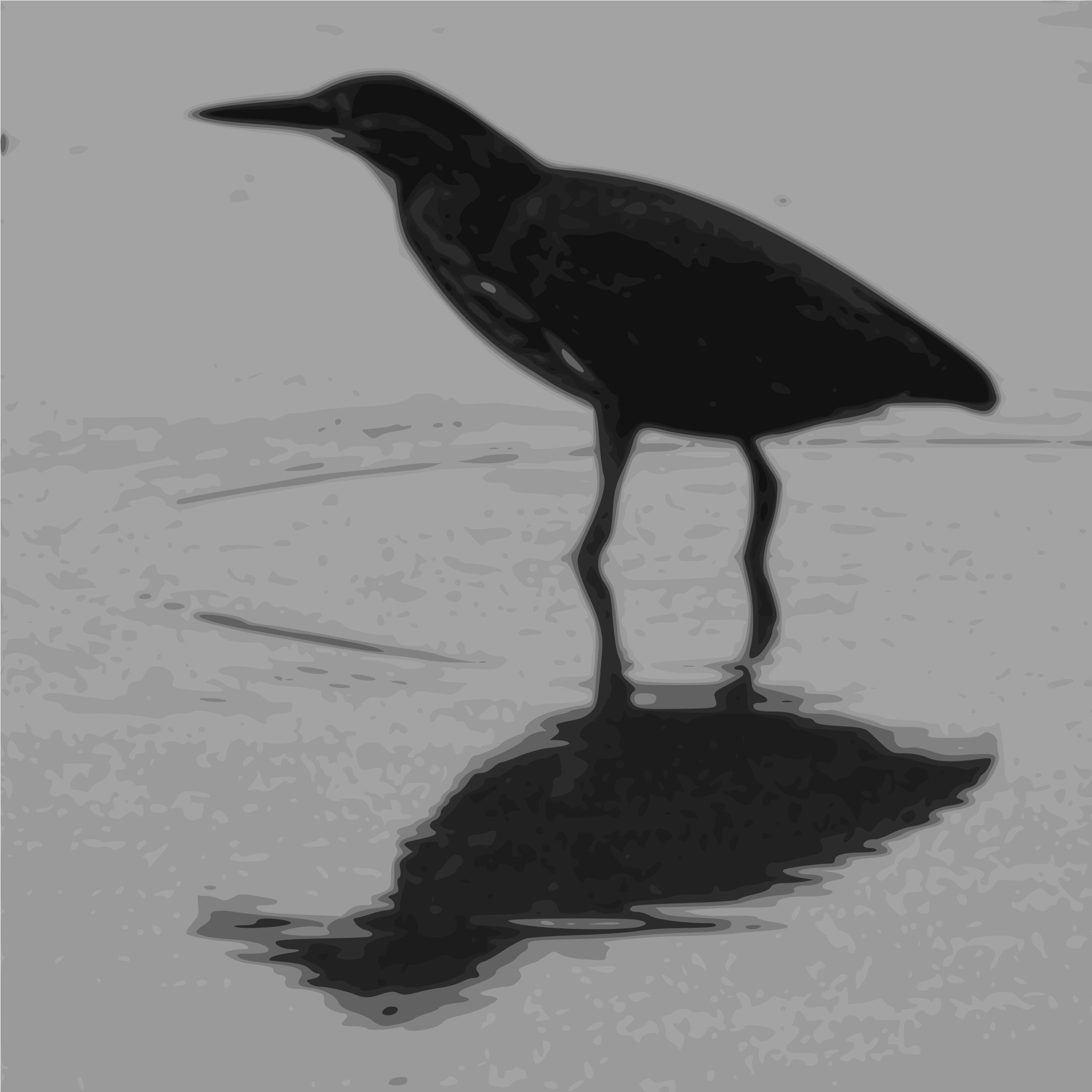 Green Heron clipart #7, Download drawings