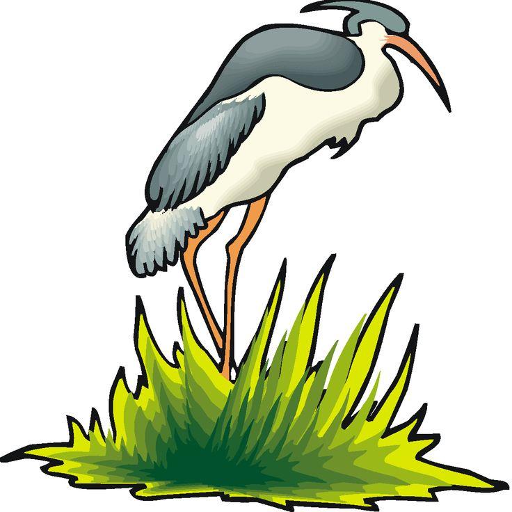 Green Heron clipart #3, Download drawings