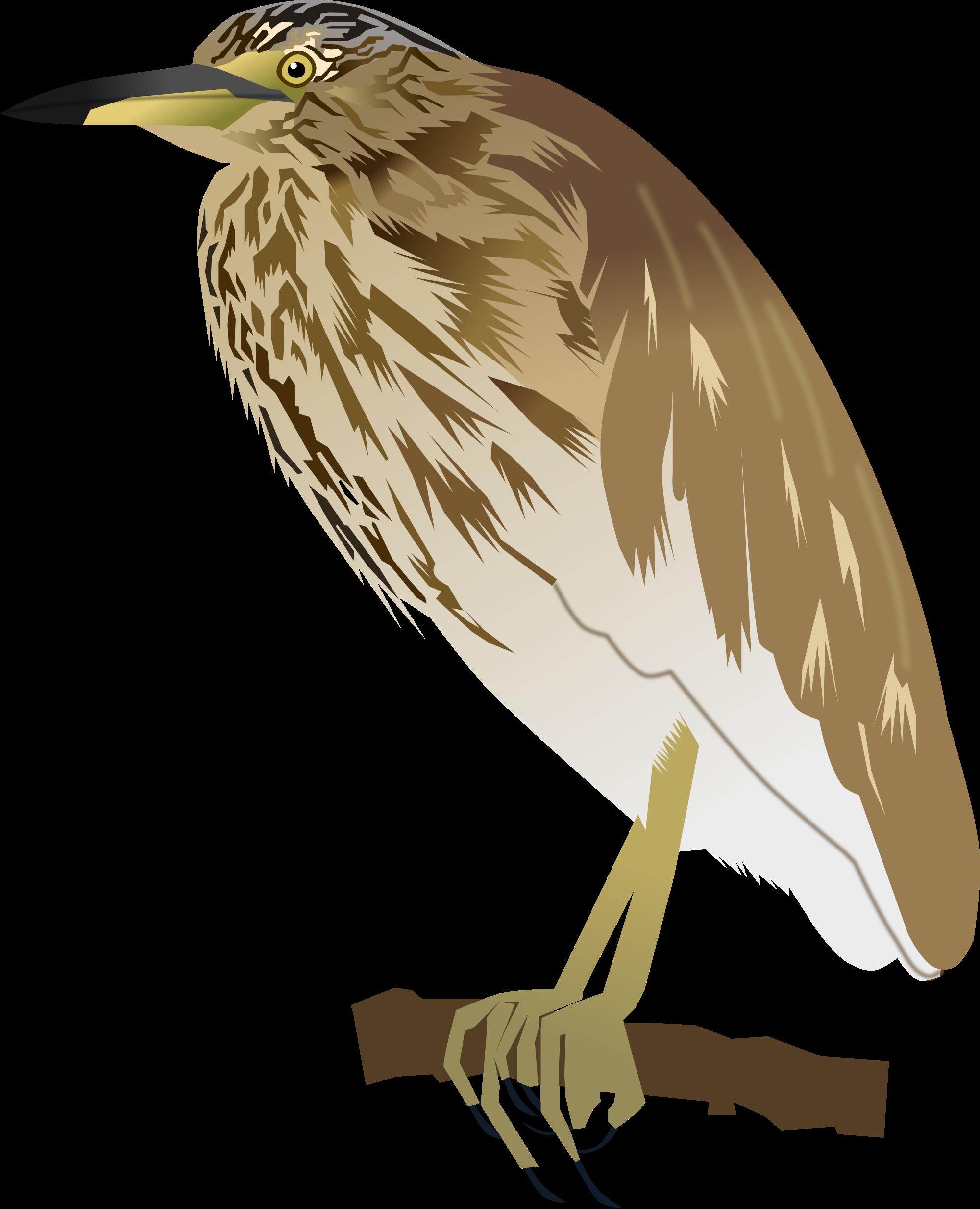 Green Heron svg #16, Download drawings
