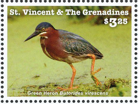 Green Heron svg #12, Download drawings