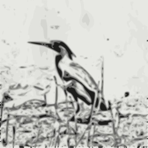 Green Heron svg #8, Download drawings