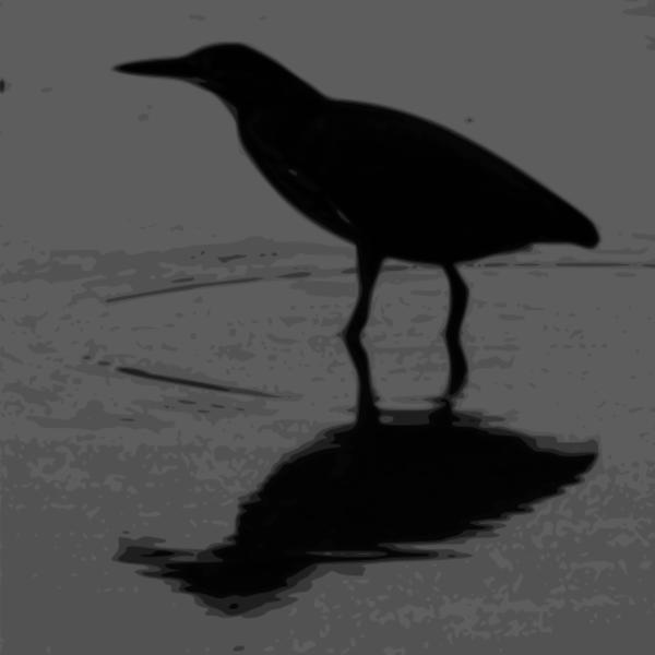 Green Heron svg #13, Download drawings
