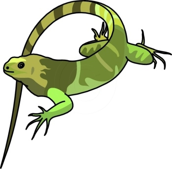 Green Iguana clipart #4, Download drawings