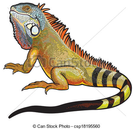 Green Iguana clipart #5, Download drawings