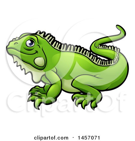 Green Iguana clipart #6, Download drawings