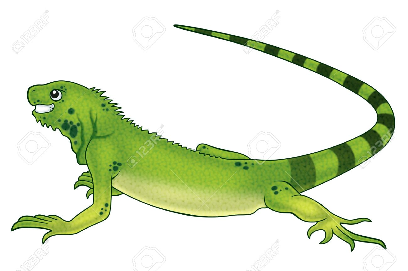 Green Iguana clipart #13, Download drawings