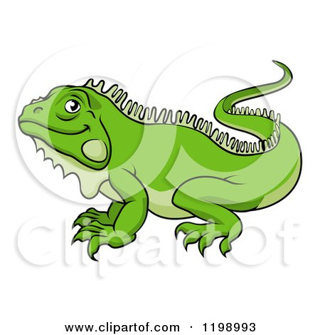 Green Iguana clipart #14, Download drawings