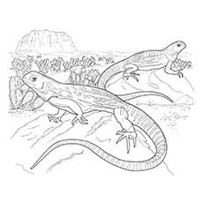 Green Iguana coloring #1, Download drawings