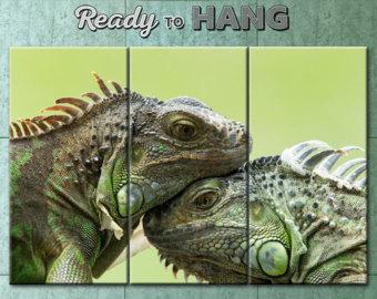 Green Iguana svg #10, Download drawings