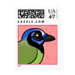 Green Jay clipart #9, Download drawings