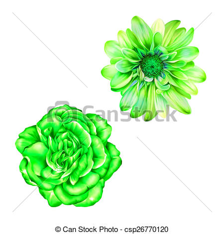 Green Rose clipart #19, Download drawings