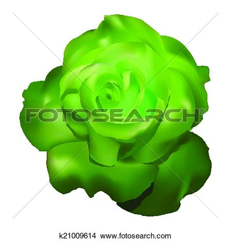 Green Rose clipart #13, Download drawings