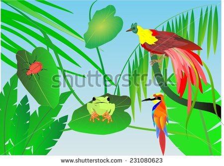 Green-throated Bird Of Paradise clipart #7, Download drawings