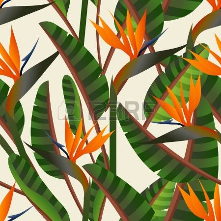 Green-throated Bird Of Paradise coloring #1, Download drawings